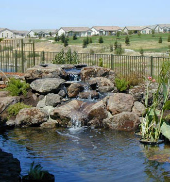 Water Feature Landscape Design