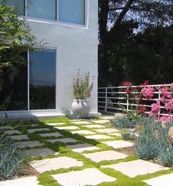 Walkway Landscape Design Folsom