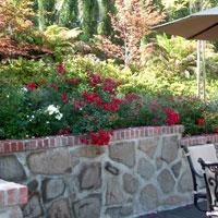 Folsom Landscape Garden Design